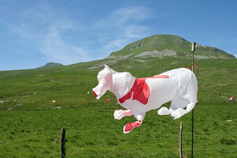 'Vaches à air' von Stéphanie Buttier und Laurence Robert (2010)