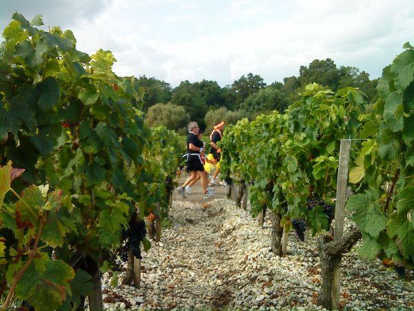 Le Marathon du Médoc durch die bekanntesten Weingegenden von Bordeaux