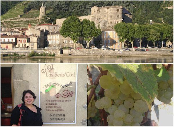 Weinkeller mit Bar Les Sens'Ciel in Tournon-sur-Rhône