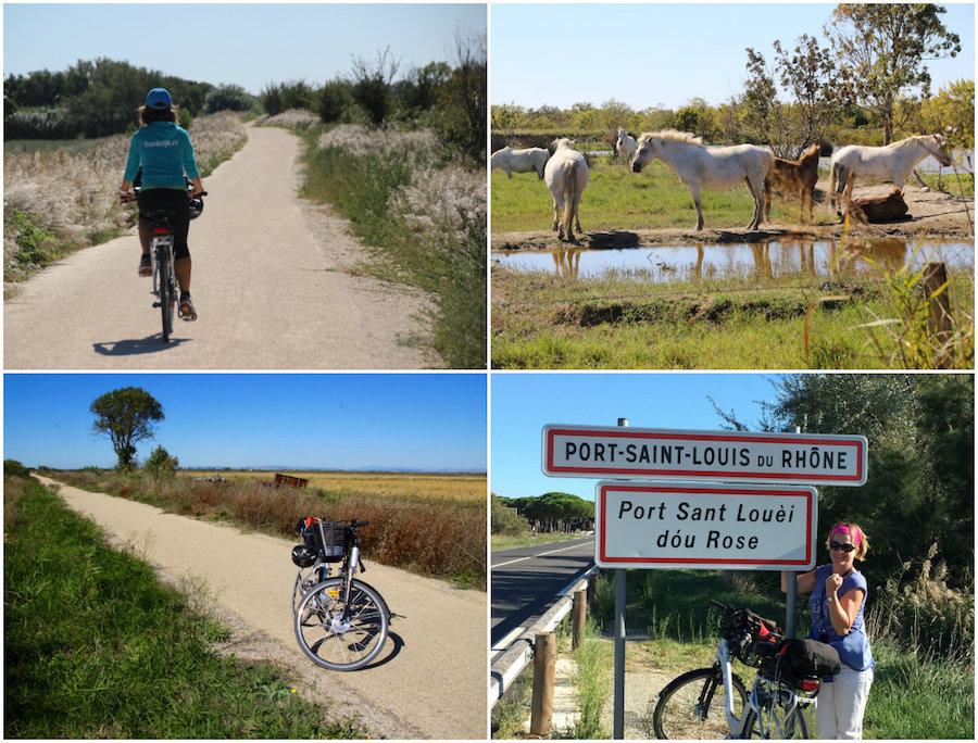 Radweg ViaRhona in der raude Natur der Camargue