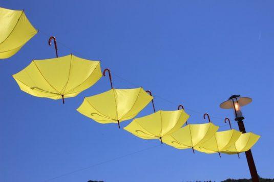 Paraplu oder parasol