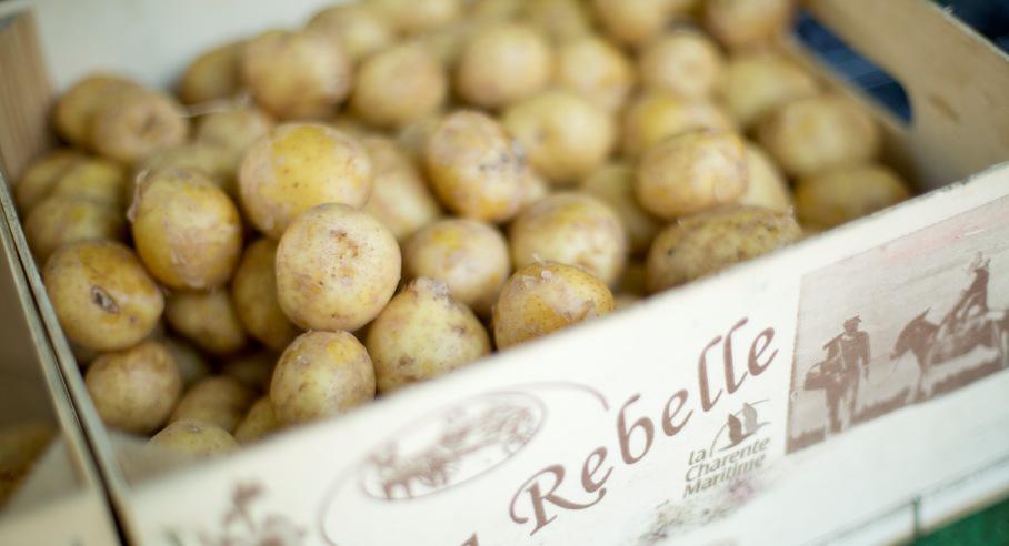 Salat mit neuen Kartoffeln aus der Ile de Re Charente Maritime