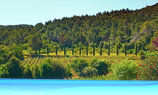 Schwimmbad im Domaine Haut Gleon Languedoc