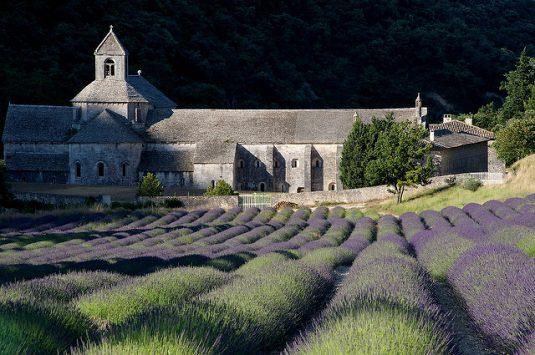 Kloster von Sénanque