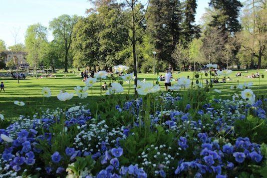 Jardin Publique picknick