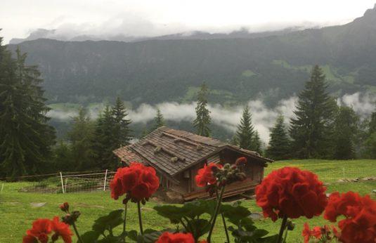 La Ferme des Vonezins Bed&Breakfast in die Savoie