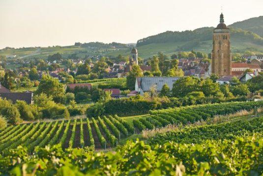 Liebliches Dorf Arbois - Jura Weinberge
