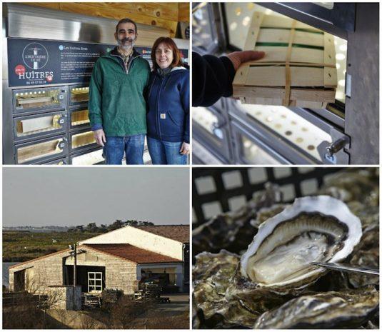 Austernzüchter L'Huîtrière de Ré