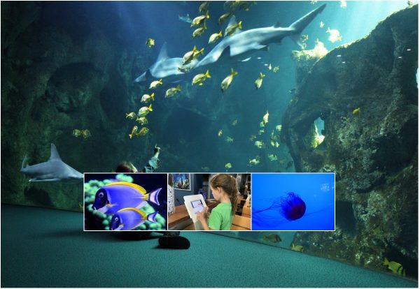 Aquarium von La Rochelle mit der Familie
