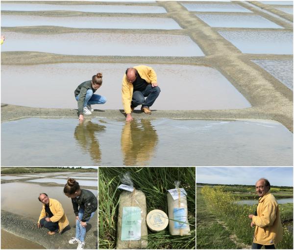 Salzgärten in Mesquer bei Guérande mit Nicolas