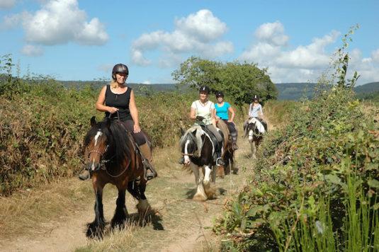 Paardreiden im der Bourgogne