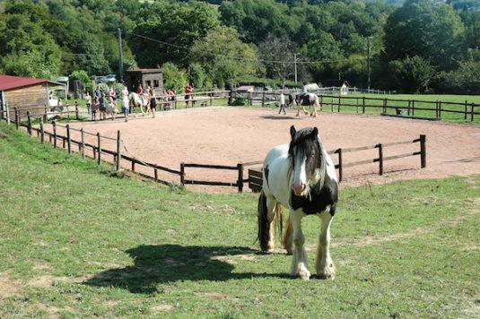 Paardrijden fur kindern auf Morvan Rustique