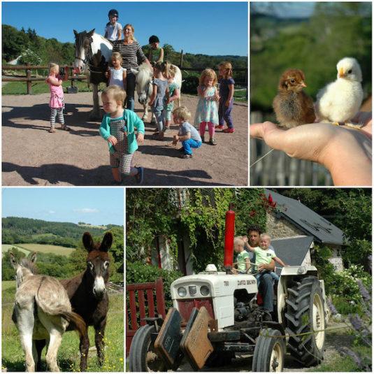 dieren und kindern auf Ferein Morvan Rustique