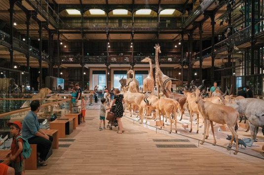 Jardin des Plantes Museum National d'Histoire Naturelle (MUCEM)