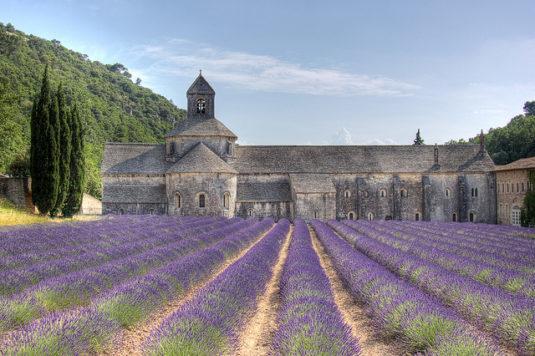Die bekannte Abtei von Sénanque, nahe Gordes