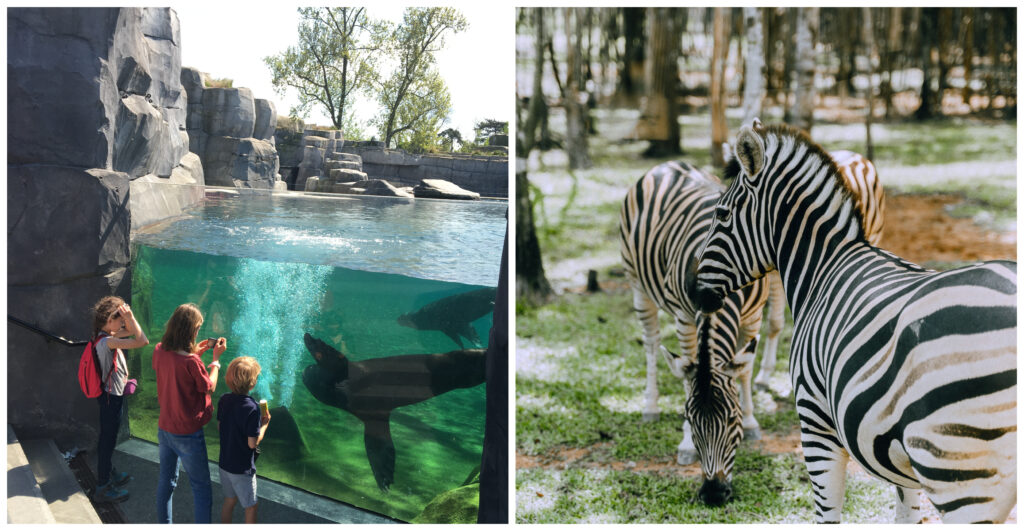 Parc Zoologique Paris