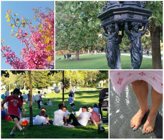 Im Park picknicken mit Kindern