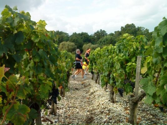 Marathon du Médoc – 8. September 2018