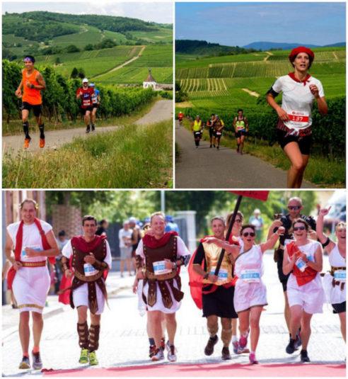 Marathon du Vignoble Alsace – 14. Juni 2018