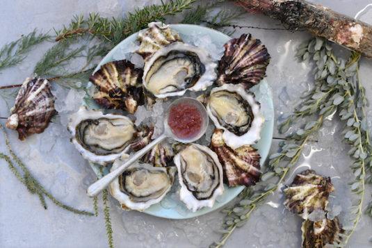 Austern aus Tarbouriech
