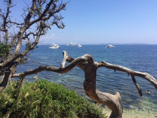 Tagestour Insel Sainte Marguerite Côte d'Azur