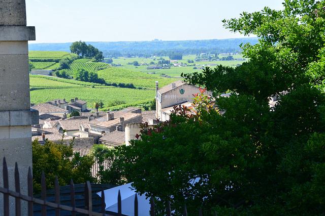 Die Weinberge von Saint-Émilion