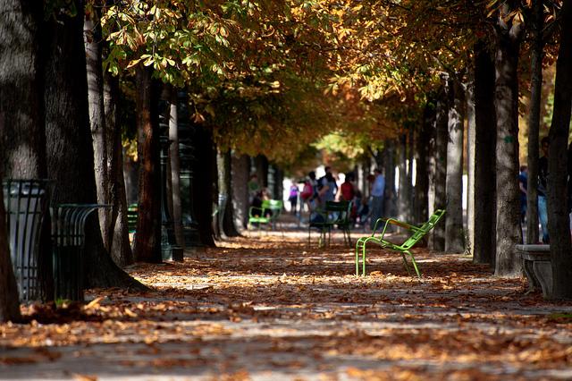 Die Herbstfarben in den Pariser Parks genießen Jardin du Luxembourg, Tuileriengarten, Jardin du Palais-Royal