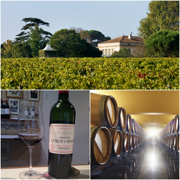 . Workshops: Wein nach eurem Geschmack