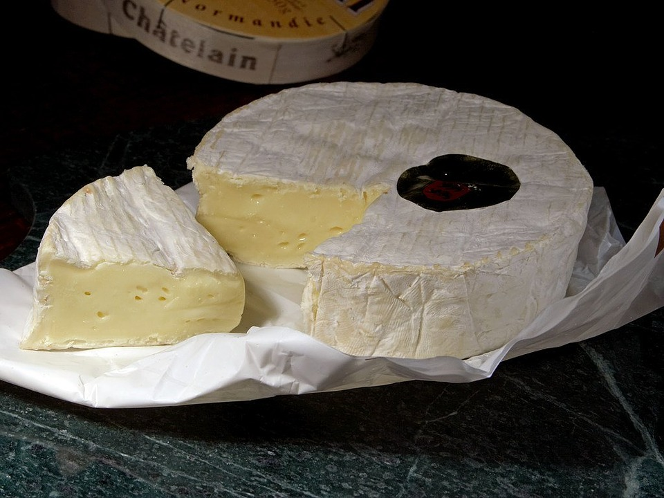 Camembert Käse-Stinker