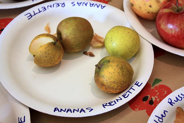äpfel Ananas Reinette