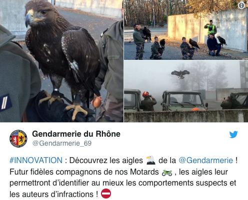 Adler als Geschwindigkeitskontrolleure in Rhône-Alpes