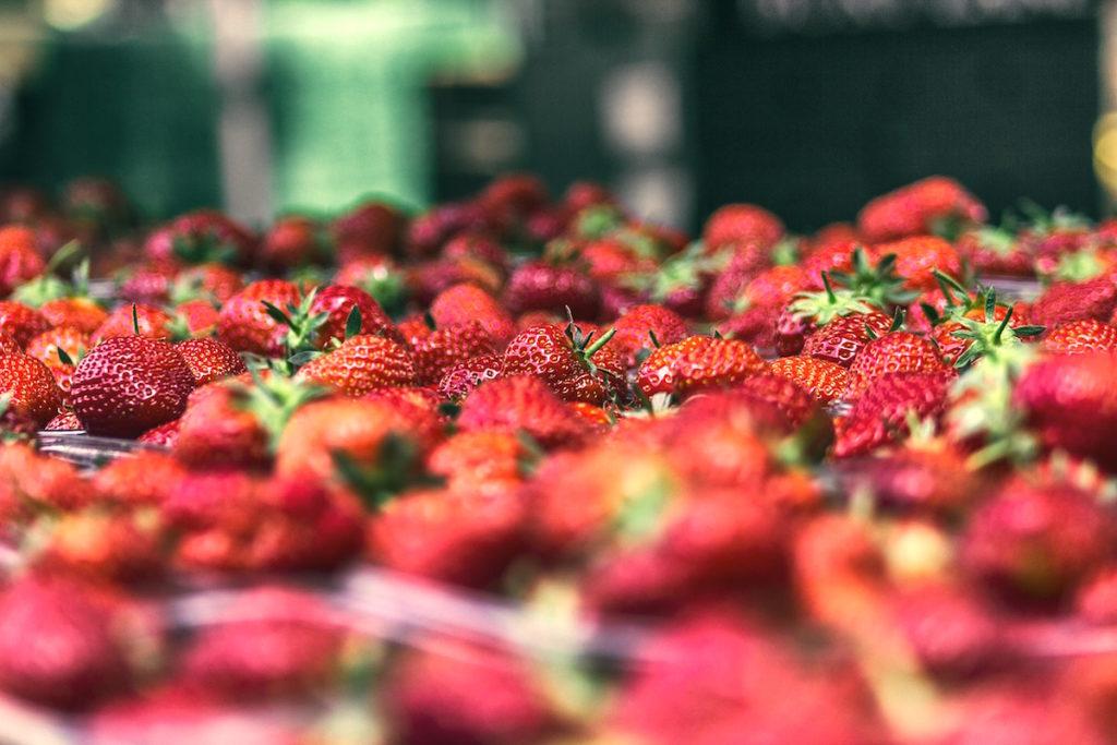 recept tarte aux fraises- erdbeeren