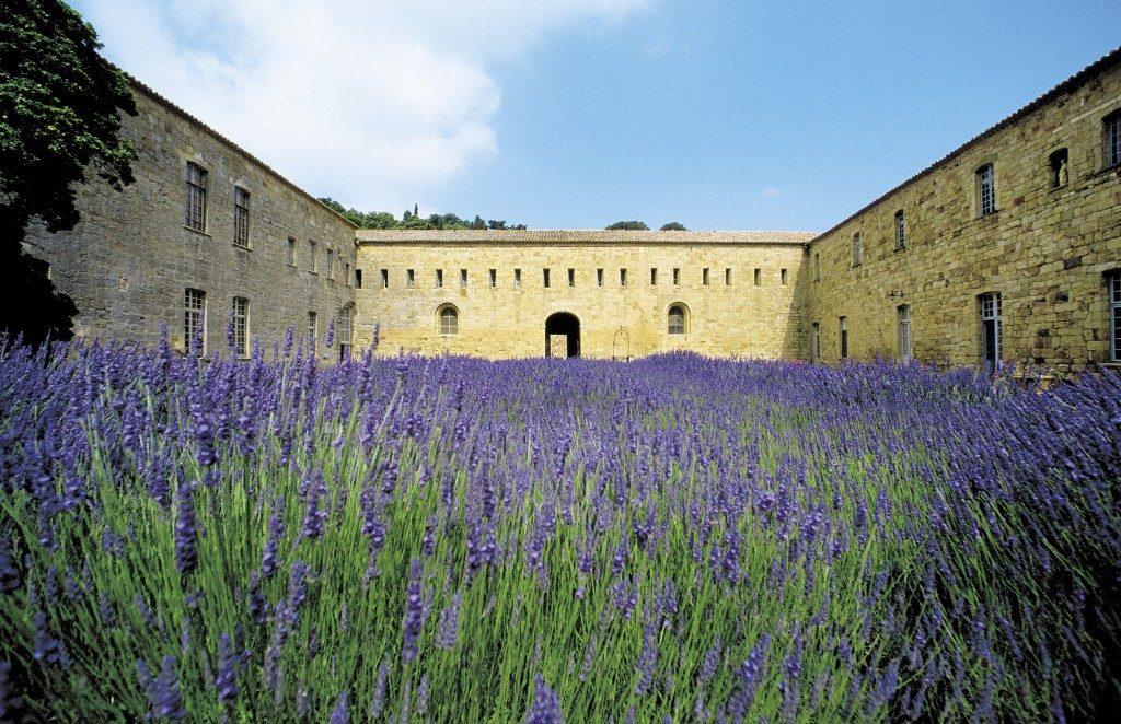Abbaye de Fontfroide Narbonne Languedoc Roussillon
