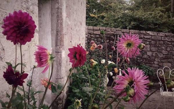 Normandie B&B Maison Les Hirondelles Garten