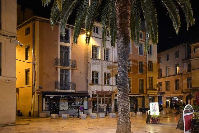 Nîmes Palmier Place