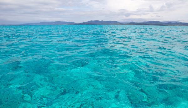 Korallenriffe Neu Kaledonien