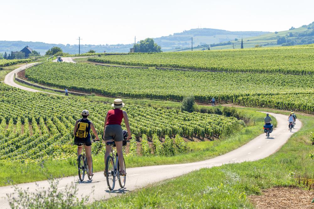 Bourgogne am Fahrrad