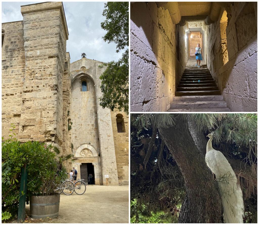 Kathedrale von Maguelone