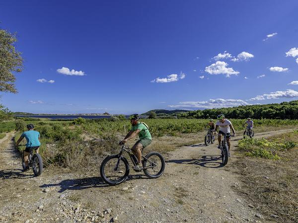 Gruissan Radfahren mountainbikes vigne etang Calamet ot gruissant