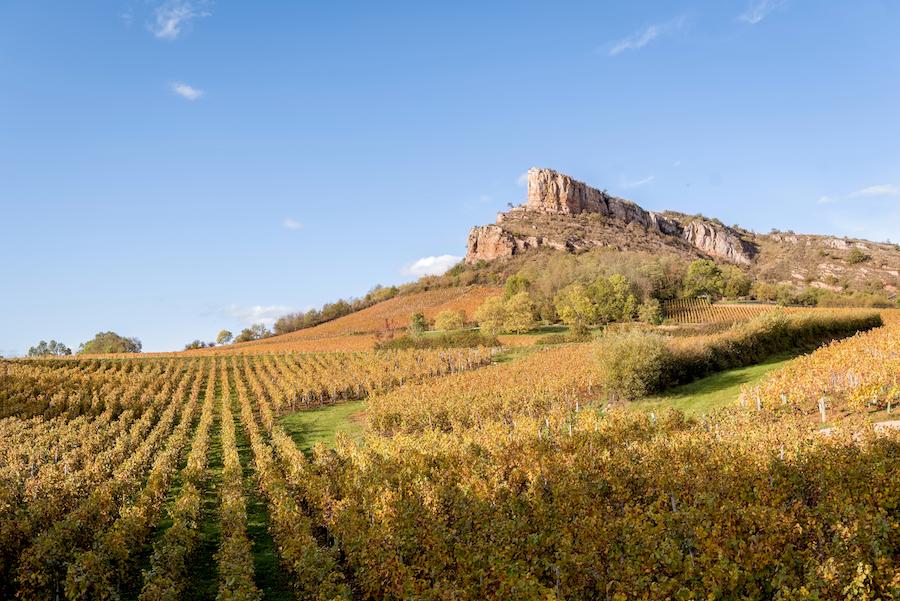 Roche de Soloutré Bourgogne Herbst