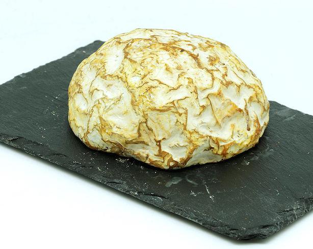 Cremet du Cap Blanc Nez Käse aus Nordfrankreich