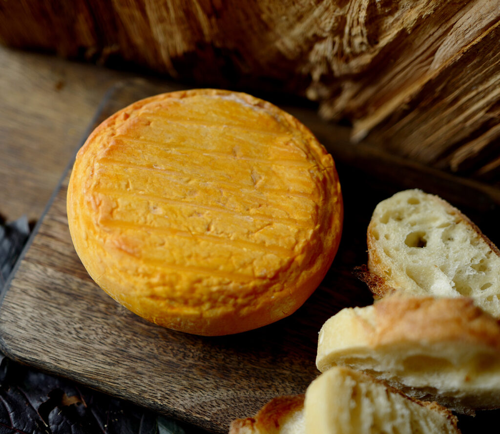 Käse aus Nordfrankreich Fleurs d'Audresselles