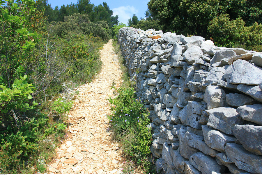 Pestmauer Vaucluse